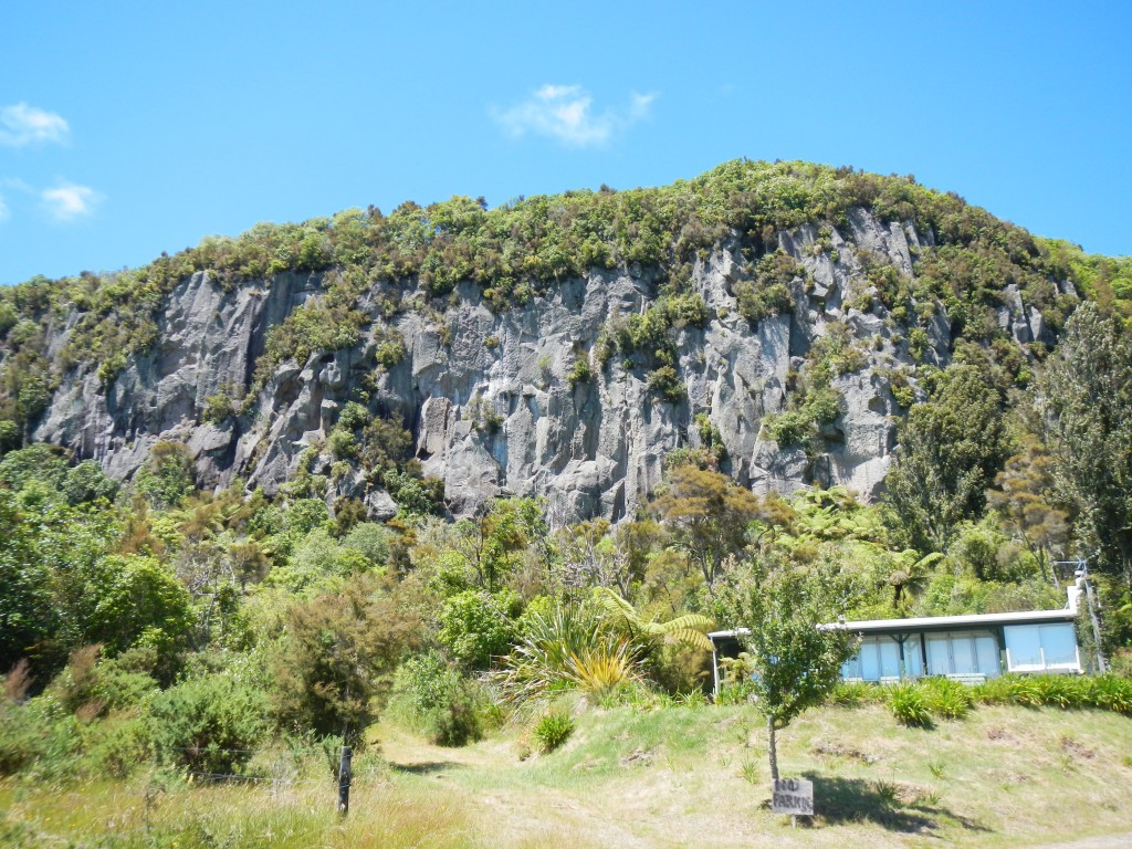 The plateau area in Whanganuy bay